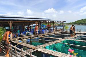Nha Trang Diving Boatcruise