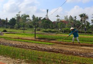 Hoi An - lille landsby